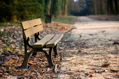 bench-in-a-park_1160-671